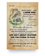 To My Granddaughter Life Gave Me The Gift Of You Elephant Poster