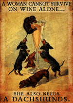 Cannot Survive On Wine Alone Pack Of Dachshunds Poster
