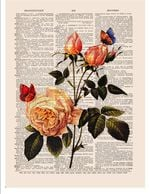 Rose And Butterfly Plant And Animal Living Dictionary Cute Page Vintage Gift