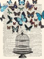 Butterfly Bird Cage Lock Opened Society Freedom Home Decoration Dictionary Art Work Gift