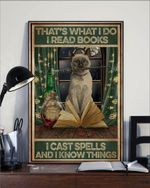 I read books cast spells and know things Siamese Cat poster