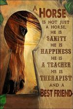 A horse is not just a horse he is therapist and a best friend poster