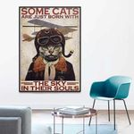 Cat Pilot Some cats are just born with the sky in their soul poster canvas