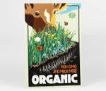 Gardening Non-Gmo And Much More Organic