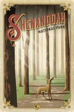 Shenandoah National Park Road Trip Poster