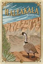 Haleakala National Park Road Trip Poster