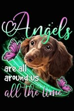 Beagle Angels Dont Always Have Wings Sometimes They Have Paws Animal Poster