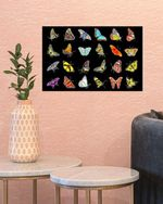 Vintage butterfly Bedroom decor Museum poster No Frame