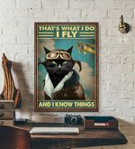 Thats What I Do I Fly And I Know Things cat poster
