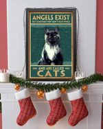 Angels exist but something they don't have wings and are called cat Poster No Framed