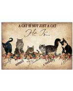 A Cat Is Not Just A Cat He Is A Best Friend Poster, Black Cat Art Print, Cat Wool Wall Decor Poster No Frame