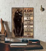 A Cat Is Not Just A Cat He Is A Best Friend cat poster