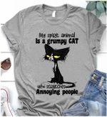 My Spirit Animal Is A Grumpy Cat Who Scratches Annoying People Shirt