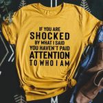 If you are shocked by what i said you haven't paid attention to who i am tshirt