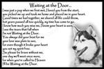 Siberian Husky Dog Pet Loss Memorial Bereavement Fridge Magnet Gift poster