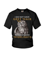 I do not have grey hair I have wisdom highlights owl hair Tshirt gift for owl lovers owl enthusiasts Tshirt