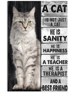 A cat is not just a cat he is sanity happiness and a best friend cute cat poster canvas gift for cat lovers Poster