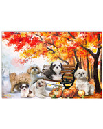 Shih tzu in park autumn yellow leaf pumpkins poster canvas gift for shih tzu lovers Poster