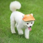 Summer Pet Dog Hat