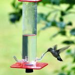 50% OFF Peter's Hummingbird Feeder