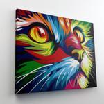 Colorful Cat 1