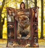 Boxer 3D Fleece Blanket