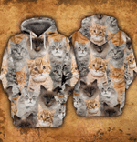 Love Cats 3D All Over Printed Hoodie