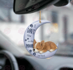 Chihuahua moon back car hanging two sided ornament