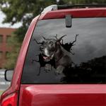 Great Dane Car Crack Sticker 04