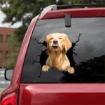 Golden Retriever Car Crack Sticker 03
