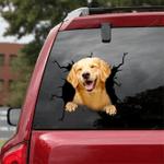 Golden Retriever Car Crack Sticker 05