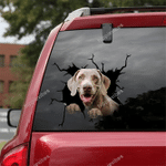 Weimaraner Crack Car Sticker 01