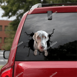Weimaraner Crack Car Sticker 06