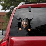 Rottweiler Crack Car Sticker 03