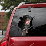 Rottweiler Crack Car Sticker 08