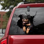 Rottweiler Crack Car Sticker 10