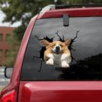 Corgi Crack Car Sticker 01