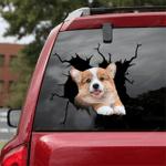 Corgi Crack Car Sticker 16
