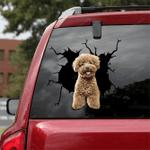 Poodle Crack Car Sticker 09