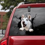 Siberian Husky Crack Car Sticker 06