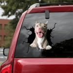 Pit bull Crack Car Sticker 06