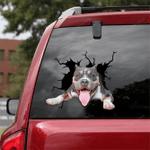 Pit bull Crack Car Sticker 07