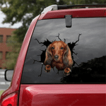 Dachshund Crack Car Sticker 02