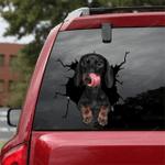 Dachshund Crack Car Sticker 05