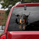 Dachshund Crack Car Sticker 07
