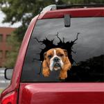 English Bulldog Crack Car Sticker 03
