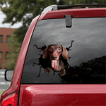 Dachshund Crack Car Sticker 12