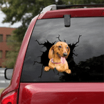 Dachshund Crack Car Sticker 14