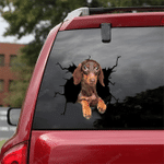 Dachshund Crack Car Sticker 16