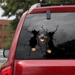 Dachshund Crack Car Sticker 17